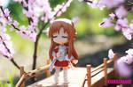 Hanami Days: Asuna is waiting for Kirito