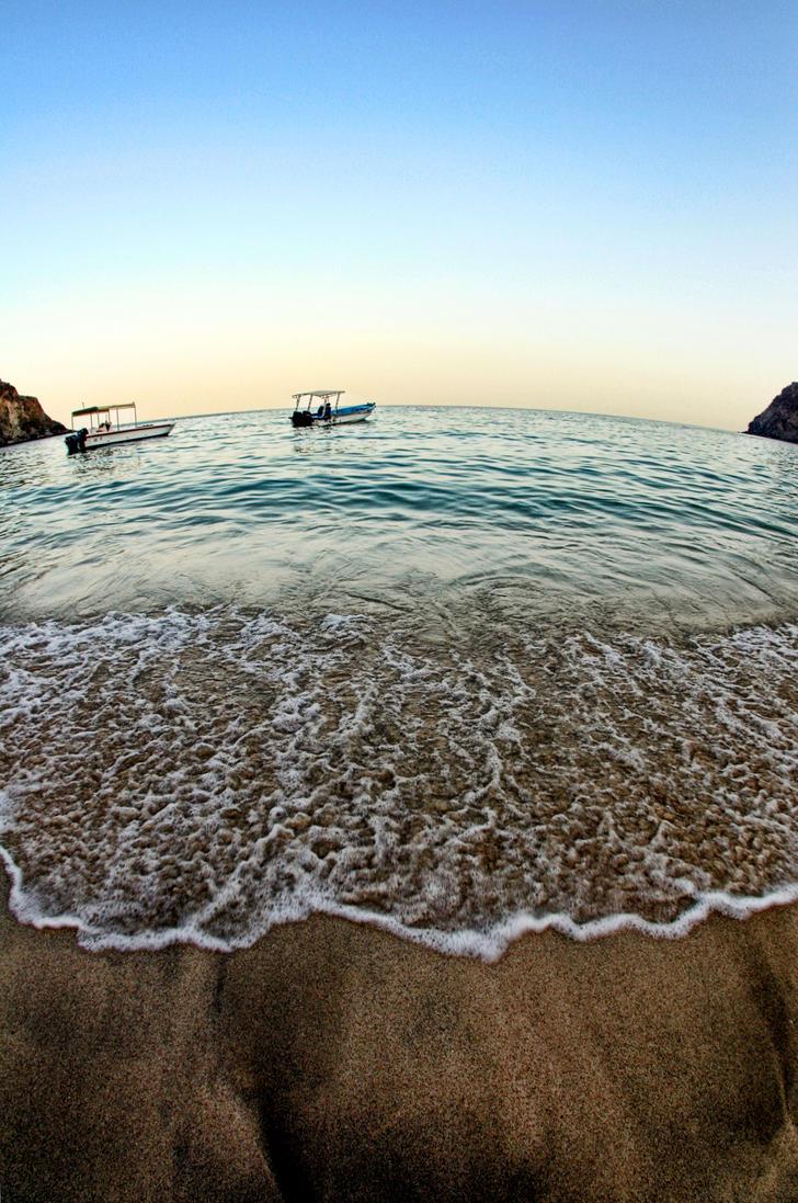 Long Live Ocean by Ali704