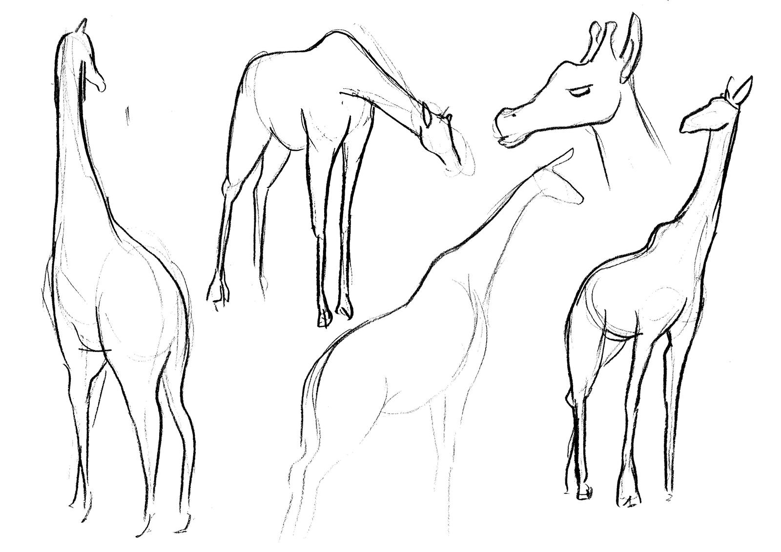 Giraffe sketches by Adele-Waldrom on DeviantArt - photo#27