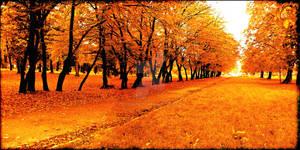 Polish autumn II