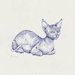 Sphynx Cat by Sithzam