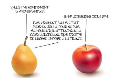 Fruits des fondus - 749