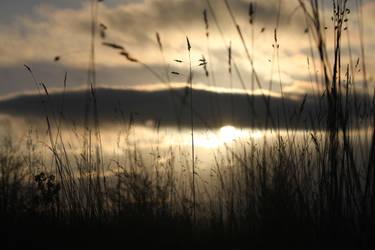 Sunset by HolleyArt