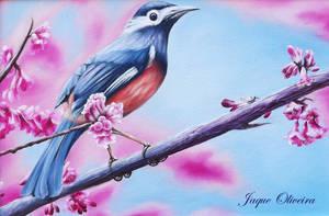 Bird - Reproduction