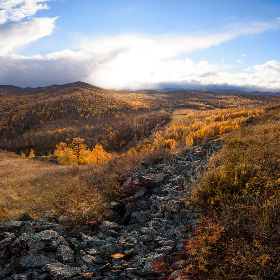 The last days of autumn by konstantingl
