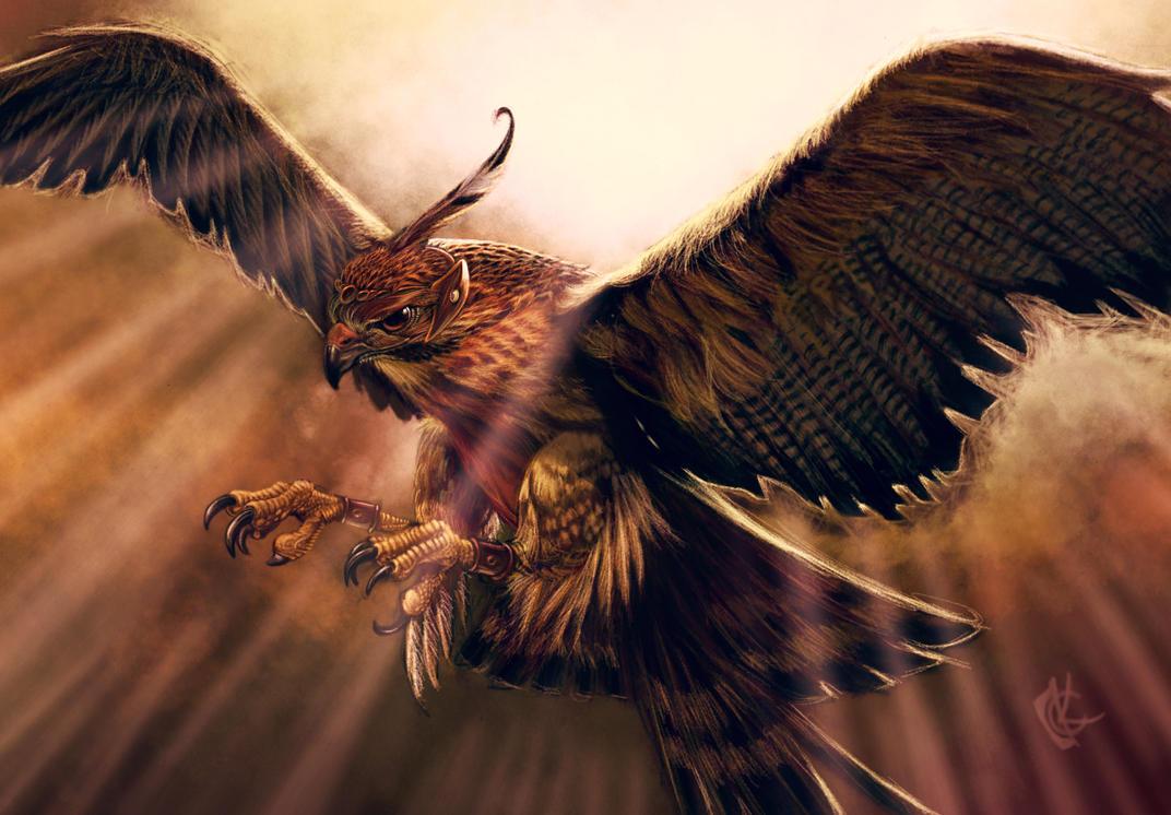 Trained Hawk by KhristianDeMedich