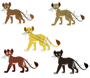 Some cubs what want homes