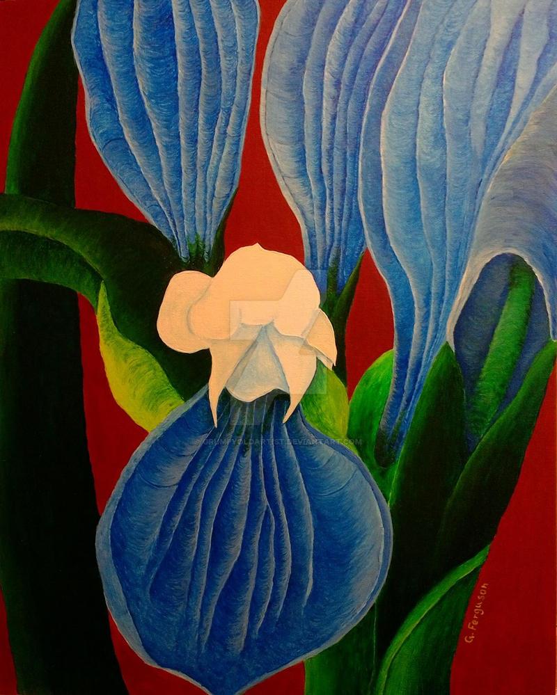 Irises On Red by GrumpyOldArtist