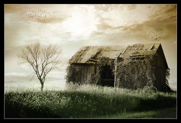 Country Barn by TammySue