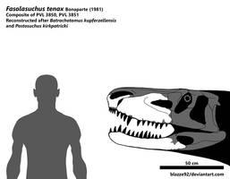 Fasolasuchus tenax skull by bLAZZE92