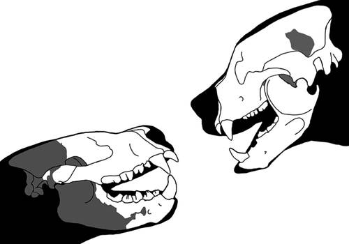 Giant beasts duo