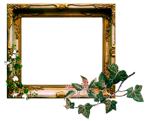 Vintage Ornate Frame png by sophia-T