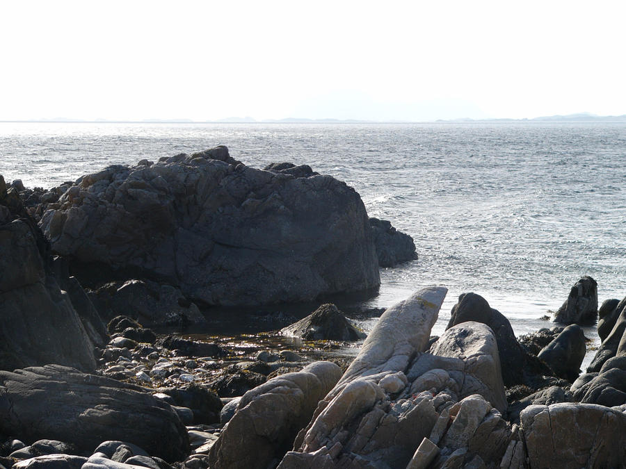 rocks by the sea6 by VaybsStocks