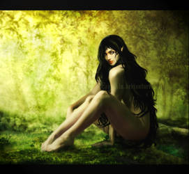 Deep Forest by LadyAlu