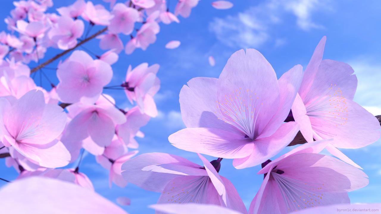 Cherry Blossoms in Blender
