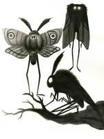Mothman Ink Sketch by wormologist