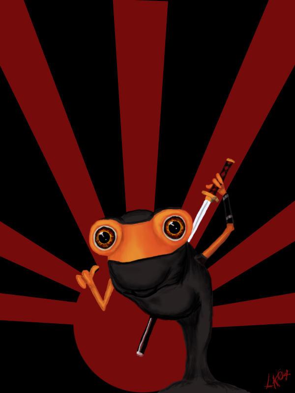 Image Result For Downloads Ninja Assasin Download
