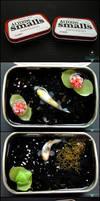 Small Tin Ponds, Set1