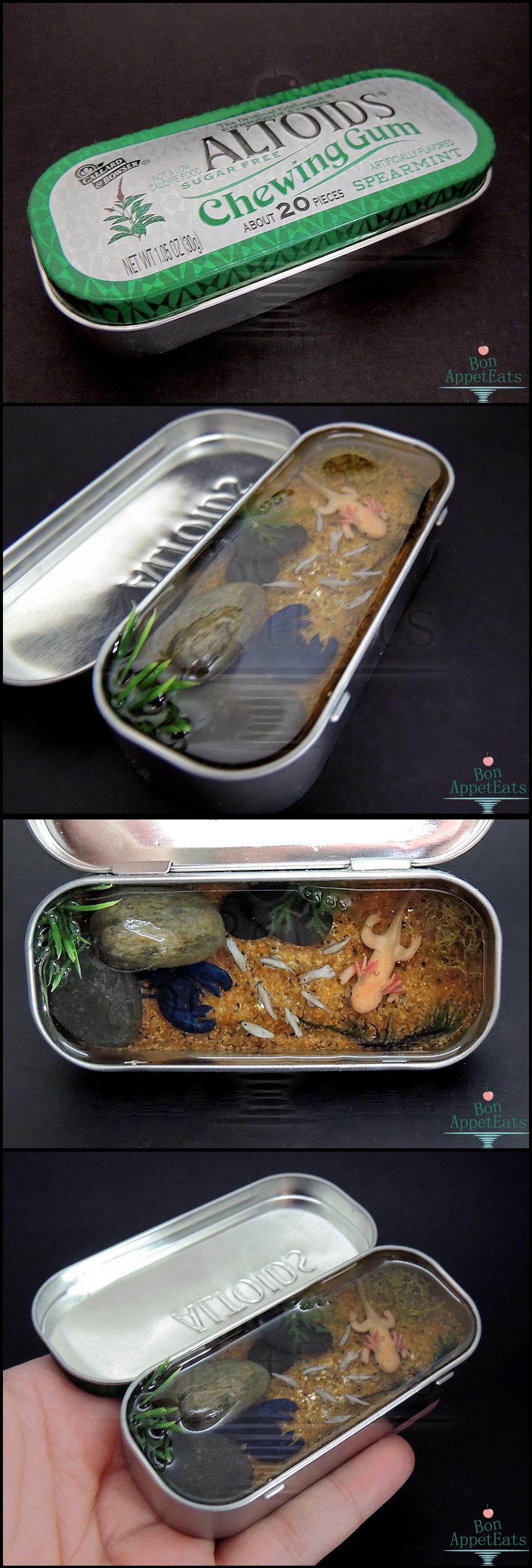 Commission: Blue Lobster and Axolotl Altoids Pond by Bon-AppetEats