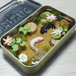 Commission - Axolotl Altoids Pond 2 by PepperTreeArt