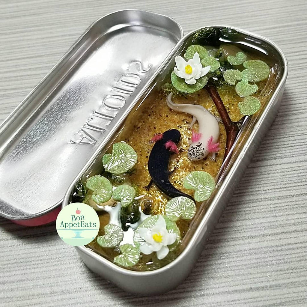 Commission - Axolotl Altoids Gum Tin Pond by PepperTreeArt