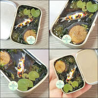 Commission - Calico Koi  Altoids Smalls Tin Pond by PepperTreeArt