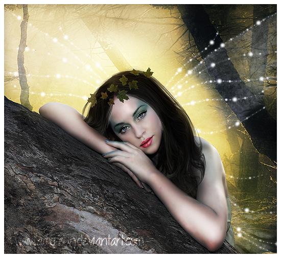 fairy by Amy-Sun