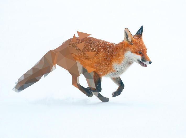 Fox Broken Low Poly by Caen-N