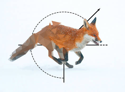 Broken Low Poly Fox2