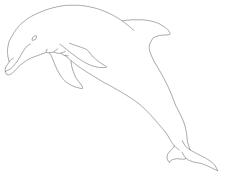 Line Art Dolphin : Dolphin line drawing