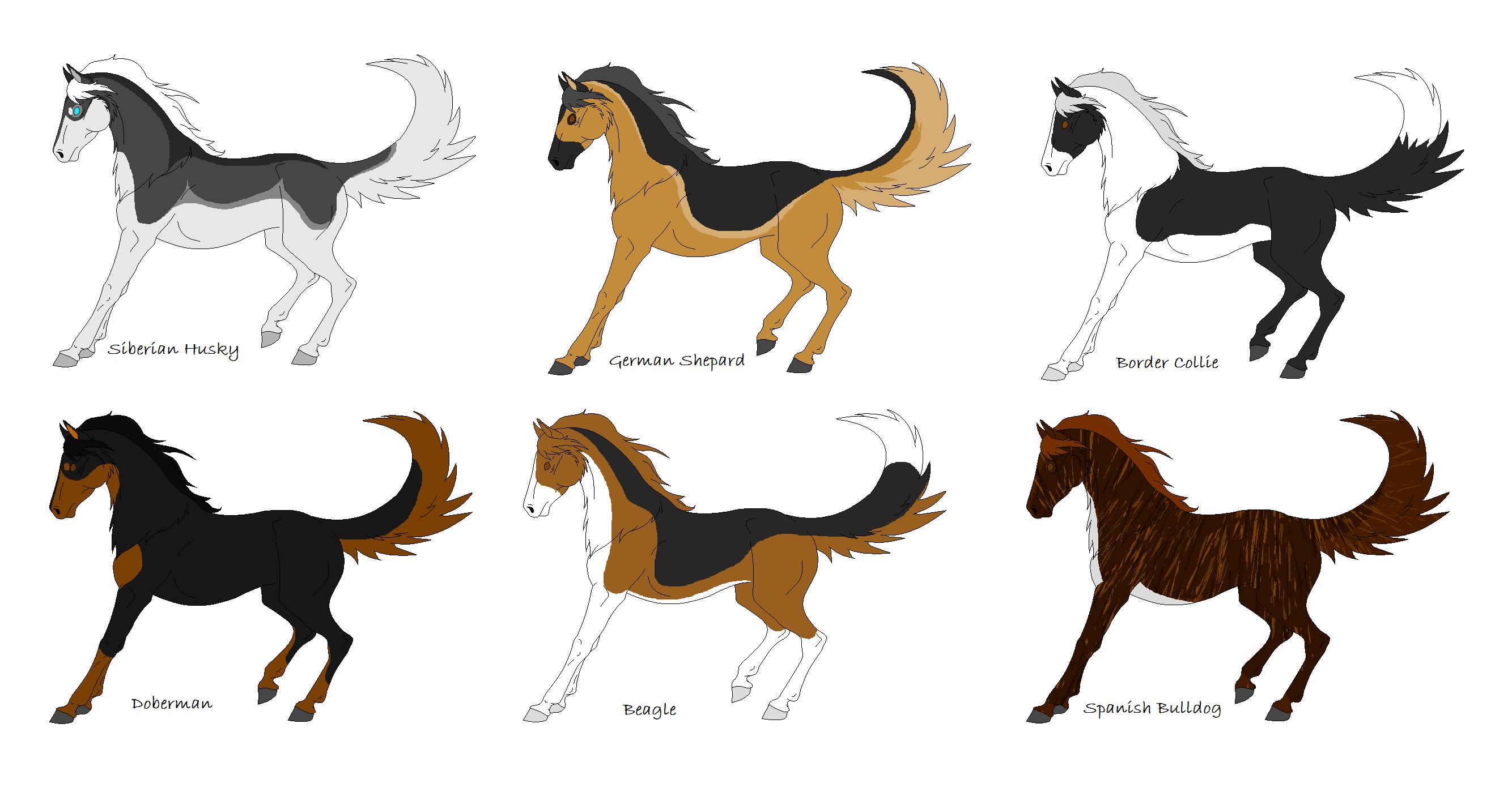Eagle Vs Dragon Drawing Dog/Horse Hybrid Adopt...