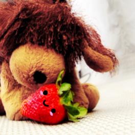 Brown Strawberry Dog
