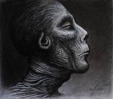 The Mummy II by KaradjinovicMarko