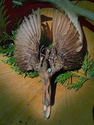 Starling Messenger Fan