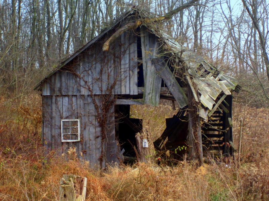 Fall's Forgotten Life by lyrabela