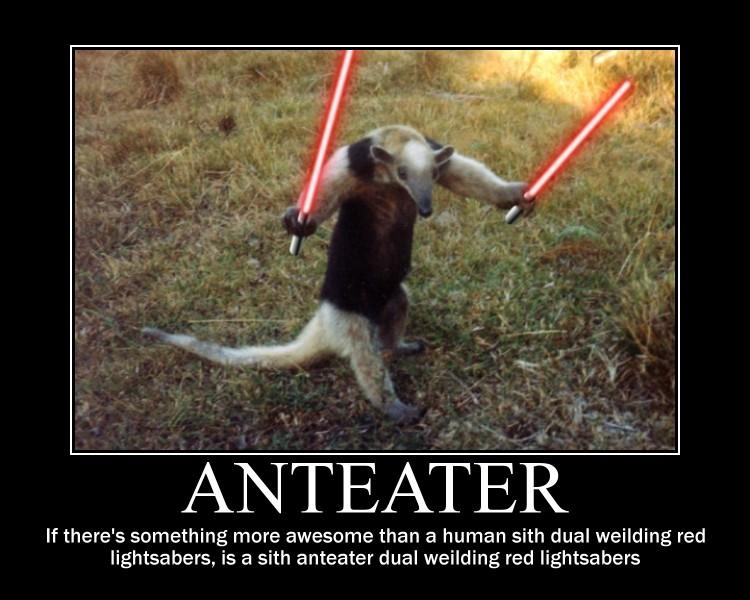 Anteater Motivational ...