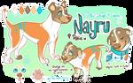 Nayru