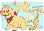 Pineapple puppy express