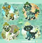 St. Patricks Pups (FTO- ALL SOLD)