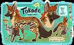 Tokoda the Maned Wolf