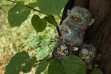 Gray and fluffy owls walking by KrafiCat