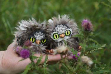 Owls in the thorn by KrafiCat