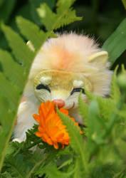 Yunmei Mirai toy and flower by KrafiCat