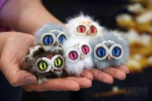 Charm owls by KrafiCat