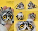 Charm owl polar