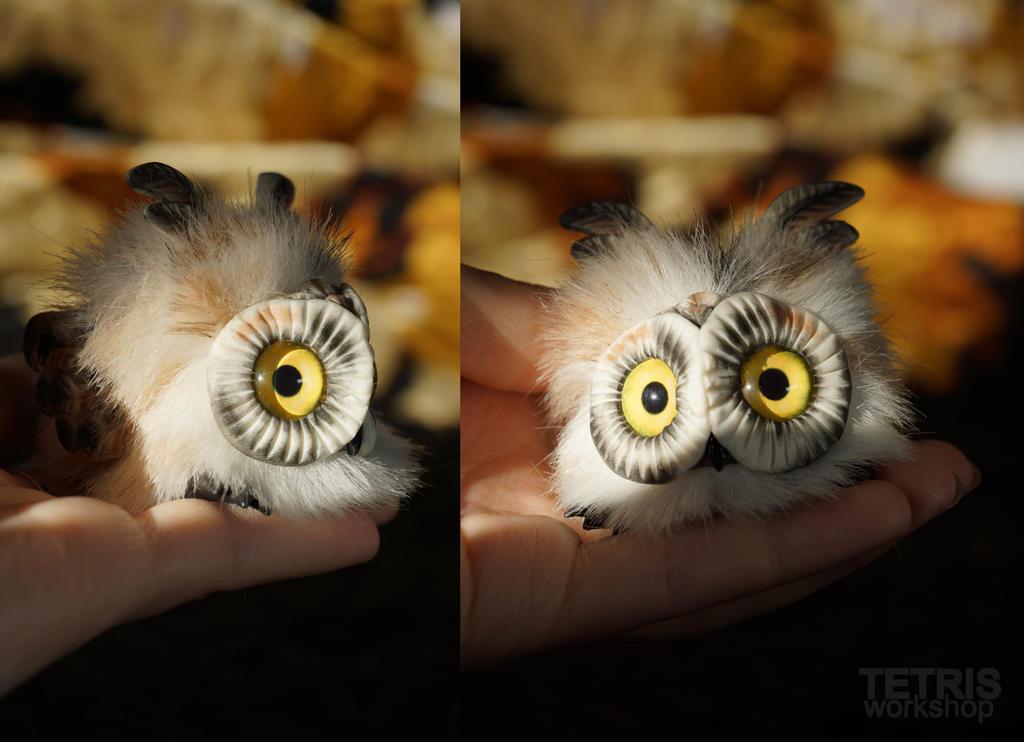 Charm polar owl 1 by KrafiCat
