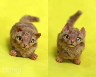 Charm tiny ginger cat play by KrafiCat