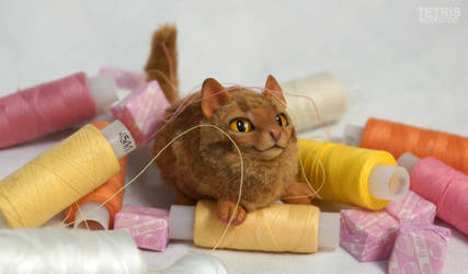 Charm ginger cat and threads by KrafiCat