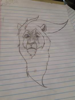Caine the lion