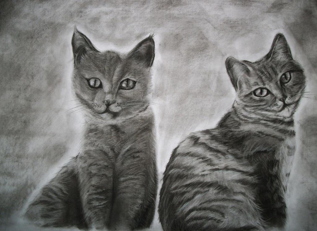 Two Fluffy Cats by Sasoriakasuna1